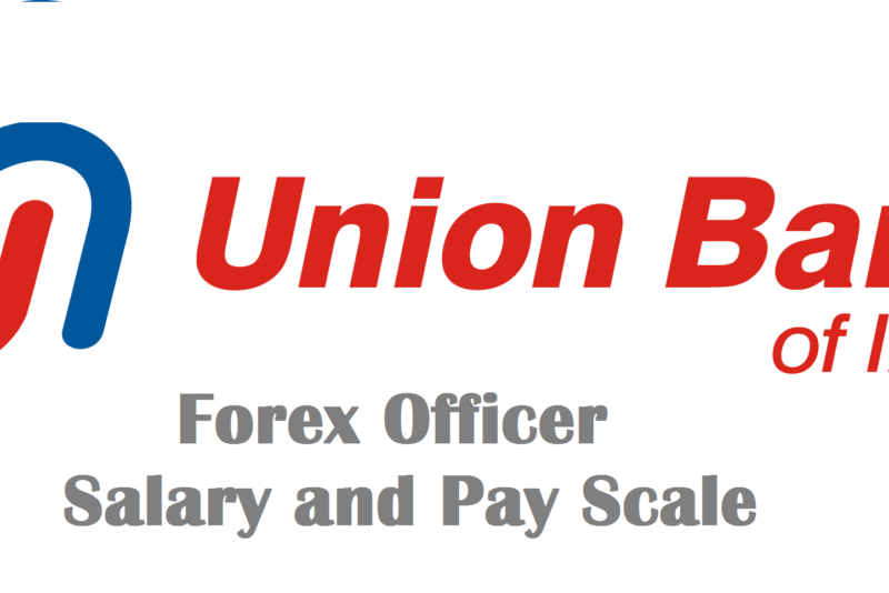 Forex trader pay scale