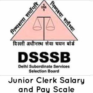 DSSSB Junior Clerk Salary